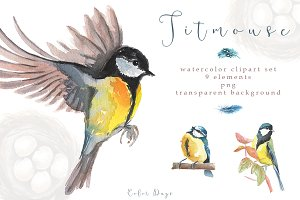 Watercolor Clipart - Titmouse