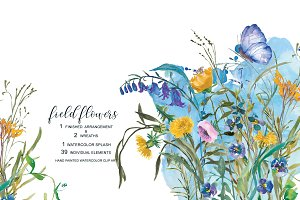 Watercolor Field Flowers Set