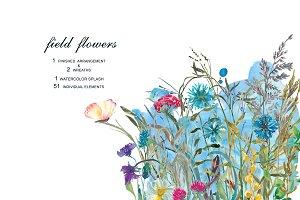 Watercolor Field Flowers Set