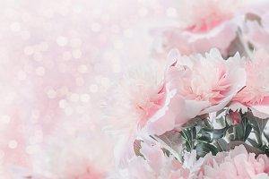 Pastel pink peonies with bokeh