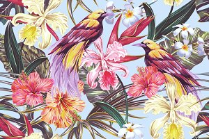 Tropical paradise birds pattern