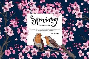 Spring. Cherry Blossom