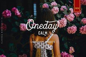 Oneday : Calm Lightroom presets