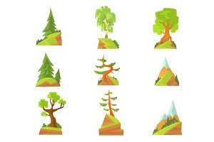 Coniferous and deciduous trees set. Natural landscape with various trees colorful vector Illustrations