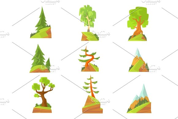 Coniferous And Deciduous Trees Set Natural Landscape With Various Trees Colorful Vector Illustrations