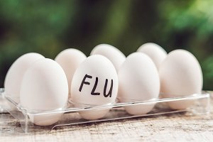 Sign FLU on the egg. The concept of disease. Avian influenza, salmanese