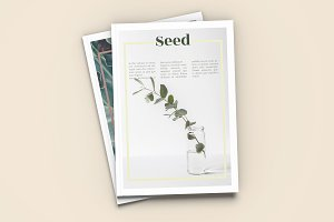Seed - A4 Magazine Template
