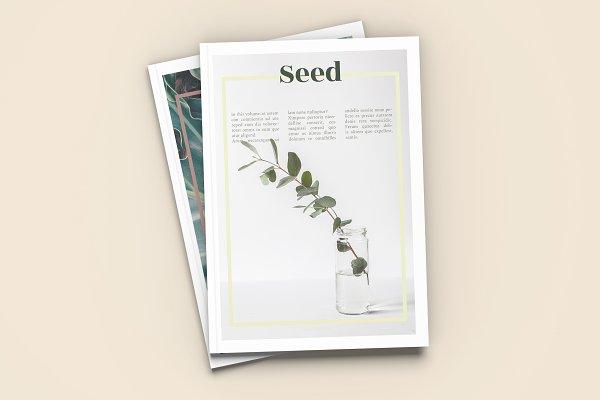 Magazine Templates: Tèrso. - Seed - A4 Magazine Template