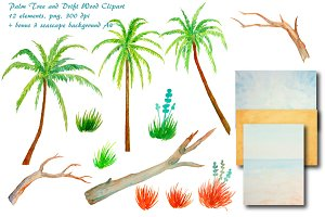 Watercolor Palm Trees Driftwood
