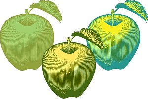Yellow and Green Apple