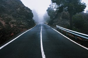 Beautiful road in the fog