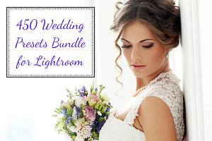 450 Wedding Presets Bundle for LR