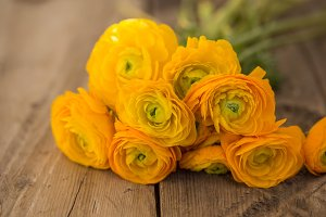 Bouquet of yellow ranunculus on wooden tabletop