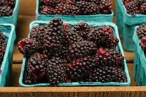 Boxes of ripe Marionberries