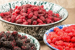 Bowls of fresh picked berries