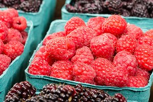 Boxes of marionberries and raspberry