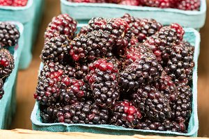 Box of fresh Marionberries