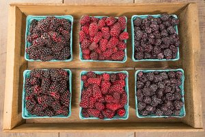 Crate of fresh ripe berries