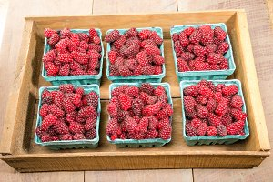 Crate of fresh Tayberries