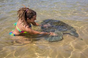 Green Sea Turtle and man