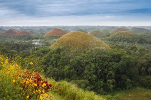 View of the Chocolate Hills in Bohol, Philippines