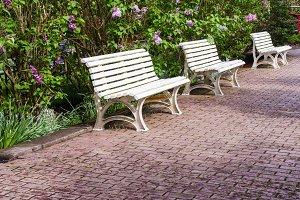 White garden benches on path