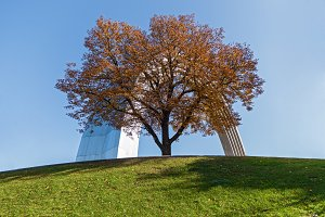 Autumn tree on the background Memorial Arch of Friendship of Peoples in Kiev, Ukraine.