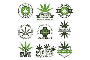 Labels set with different pictures of marijuana plants. Medical herbs, cannabis leaf