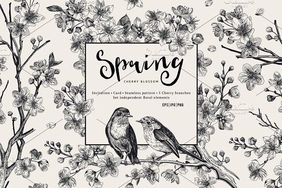 Cherry Blossom. B&W-Graphicriver中文最全的素材分享平台