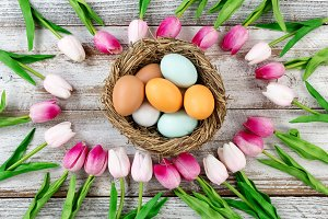 Colorful real eggs for Easter
