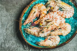 Raw uncooked tiger prawns on chipped ice, copy space