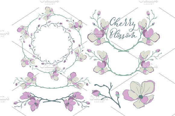 Vector Cherry Blossom Design Dividers Frames And Wreaths