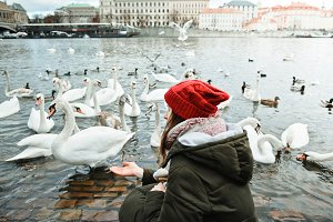 Girl feeds the swans in Old City