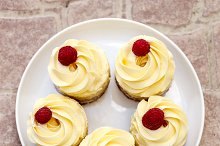 tender cup-cakes