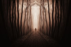 Man on path in surreal dark forest