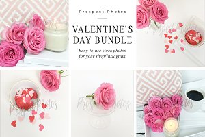 Pink Heart Mini Photo Bundle