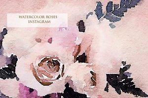 Watercolor Roses Instagram
