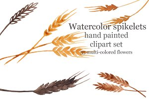 Watercolor spikelets