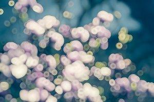 Blue pink blurred floral bokeh