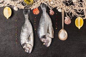 Raw dorado fish with fishing net