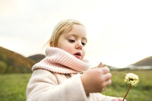Cute little girl with dandelion, autumn nature.