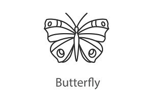 Butterfly linear icon