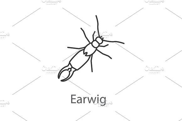 Earwig Linear Icon