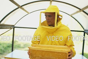 Stedicam shot of beekeeper with wodden frames walking and inspecting beehives in apiary