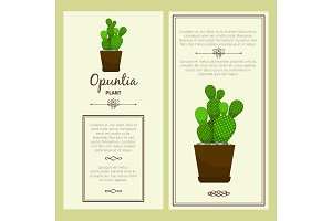Greeting card with opuntia plant