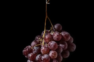 Isolated red grapes