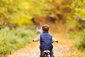 Cute little boy cycling in sunny autumn park.