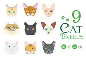9x Cat breeds Vector Collection