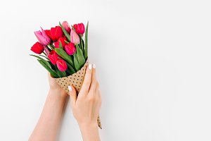 Hands hold a tulips