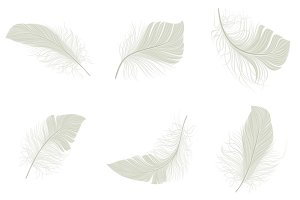 White feather icons set